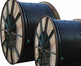 聚录乙烯绝缘电力电缆